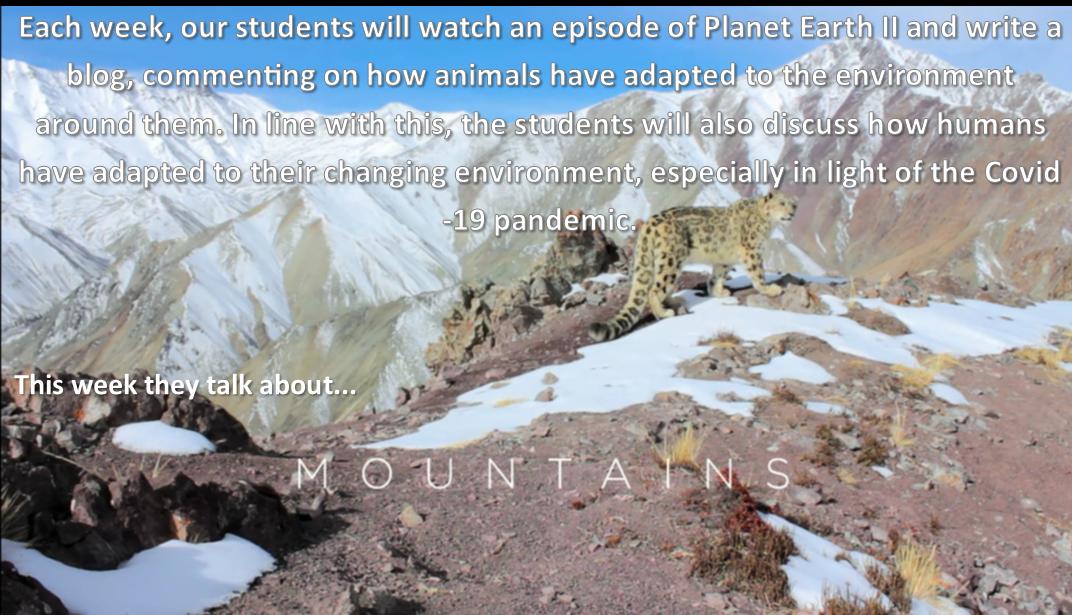 Planet Earth 2- Episode 2 (Mountains) – Aine Mallon